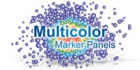 Multicolor B and T Cell Marker Panels