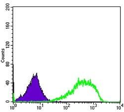 Flow Cytometry - Anti-Ku80 antibody [5C5] (ab119935)