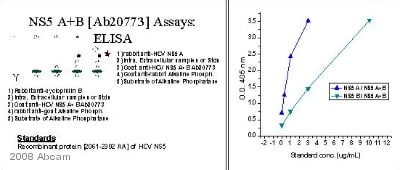 ELISA - Rabbit polyclonal Secondary Antibody to Goat IgG - H&L (AP) (ab6742)