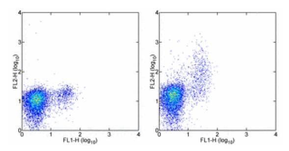 Flow Cytometry - Anti-GNLY antibody [DH2] (Phycoerythrin) (ab95829)