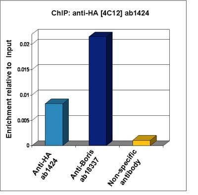ChIP - Anti-HA tag antibody [4C12] (ab1424)