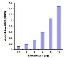 Functional Studies - Histone Extraction Kit (ab113476)