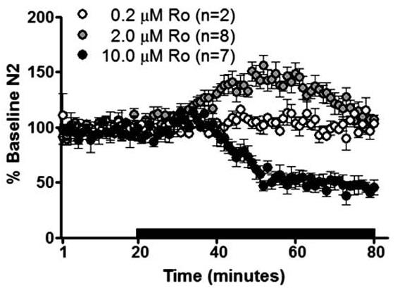 Functional Studies - Ro 25-6981 maleate salt, NR2B antagonist (ab120290)