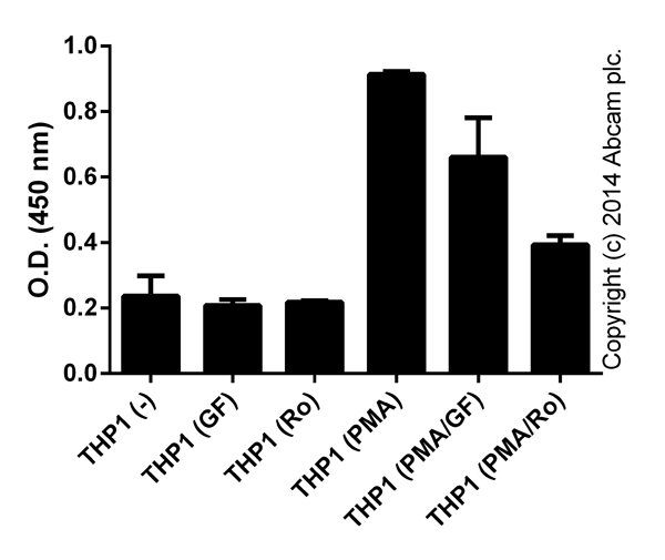 Functional Studies - Ro 31-8220 mesylate (Bisindolylmaleimide IX), Protein kinase inhibitor (ab120374)
