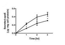 Functional Studies - Dynole<sup>&reg;</sup> 34-2, dynamin I and dynamin II inhibitor (ab120463)