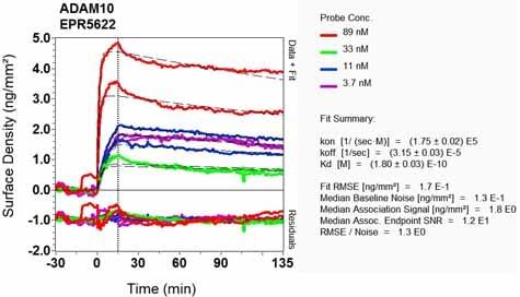 OI-RD Scanning - Anti-ADAM10 antibody [EPR5622] (ab124695)