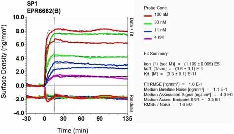 OI-RD Scanning - Anti-SP1 antibody [EPR6662(B)] (ab124804)