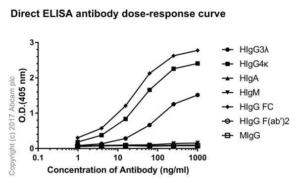 ELISA - Rabbit monoclonal [H169-1-5] Anti-Human IgG Fc (ab125909)