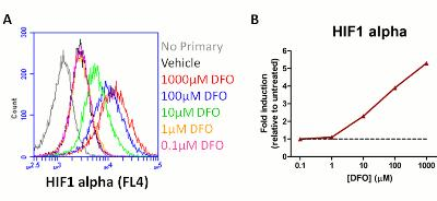 Flow Cytometry - HIF1a + PDK1 Hypoxia Flow Kit (ab126700)