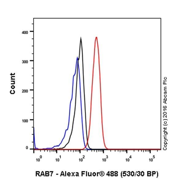Flow Cytometry - Anti-RAB7 antibody [EPR7588(B)] - Late Endosome Marker (ab126712)