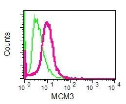 Flow Cytometry - Anti-MCM3 antibody [EPR7081] (ab126723)