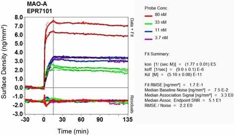 OI-RD Scanning - Anti-Monoamine Oxidase A/MAO-A antibody [EPR7101] (ab126751)