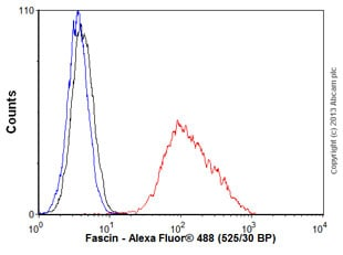 Flow Cytometry - Anti-Fascin antibody [EP5902] (ab126772)
