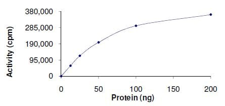Functional Studies - Recombinant human p35 protein (ab126931)