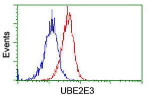 Flow Cytometry - Anti-UBE2E3 antibody [OTI4B4] (ab128098)