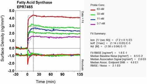 OI-RD Scanning - Anti-Fatty Acid Synthase antibody [EPR7465] (ab128856)