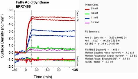 OI-RD Scanning - Anti-Fatty Acid Synthase antibody [EPR7466] (ab128870)
