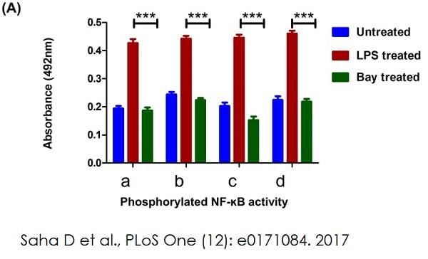 Determining p65-NF-?B by ELISA using ab133112