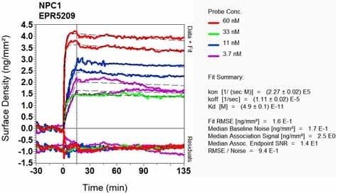 OI-RD Scanning - Anti-Niemann Pick C1 antibody [EPR5209] (ab134113)
