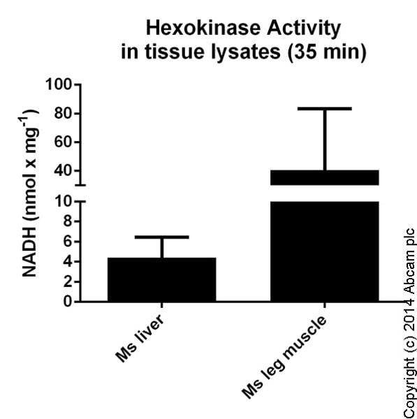 Functional Studies - Hexokinase Assay Kit (Colorimetric) (ab136957)