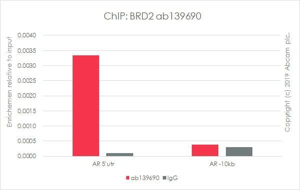 ChIP - Anti-BRD2 antibody [EPR7642] - ChIP Grade (ab139690)