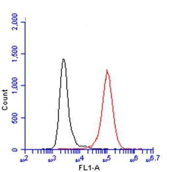 Flow Cytometry - Anti-Iba1 antibody (ab153696)