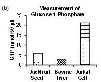 Measurement of Glucose-1-Phosphate