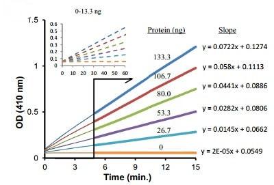 a-Glucosidase kinetic assay