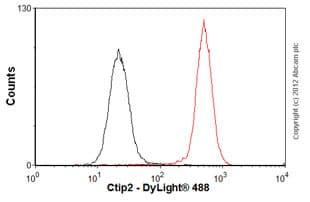 Flow Cytometry - Anti-Ctip2 antibody [25B6] - ChIP Grade (ab18465)