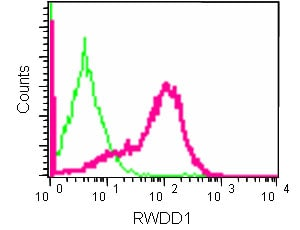 Flow Cytometry - Anti-RWDD1 antibody [EPR13715(B)] (ab181994)