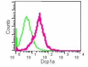 Flow Cytometry (Intracellular) - Anti-Dcp1a antibody [EPR13822] (ab183709)