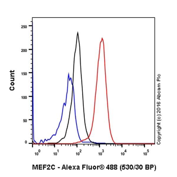 Flow Cytometry - Anti-MEF2A + MEF2C antibody [EPR19089-34] (ab197070)