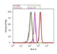Flow Cytometry - Anti-KAT13A / SRC1 antibody (ab2859)