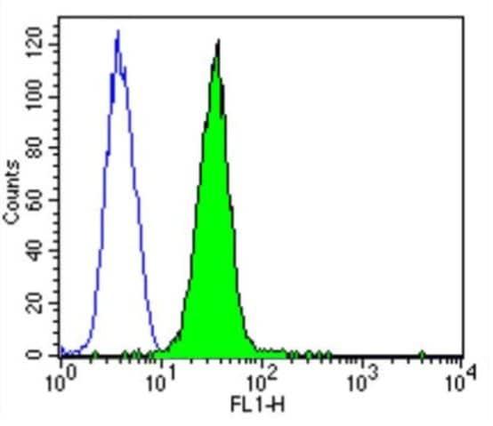 Flow Cytometry - Anti-CACNA1S antibody [1A] (ab2862)