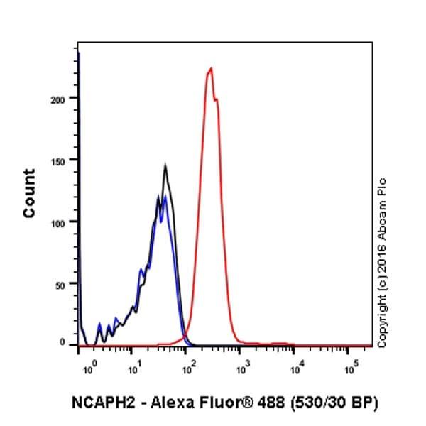 Flow Cytometry - Anti-NCAPH2 antibody [EPR17170] (ab200659)