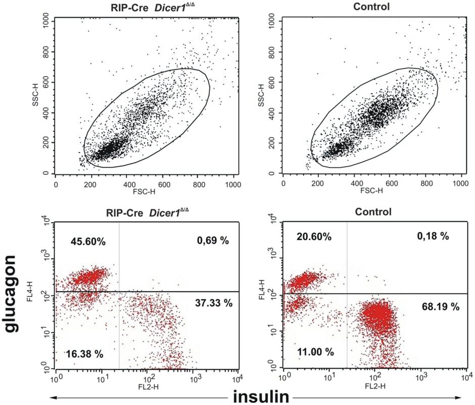 APC Conjugation Kit - Lightning-Link® labeling anti-mouse glucagon antibody for Flow cytometry