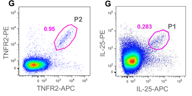 APC Conjugation Kit - Lightning-Link® labeling IL-25 and TNFR2 extracellular domain for Flow cytometry