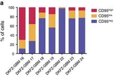 Flow Cytometry - APC Conjugation Kit- Lightning-Link
