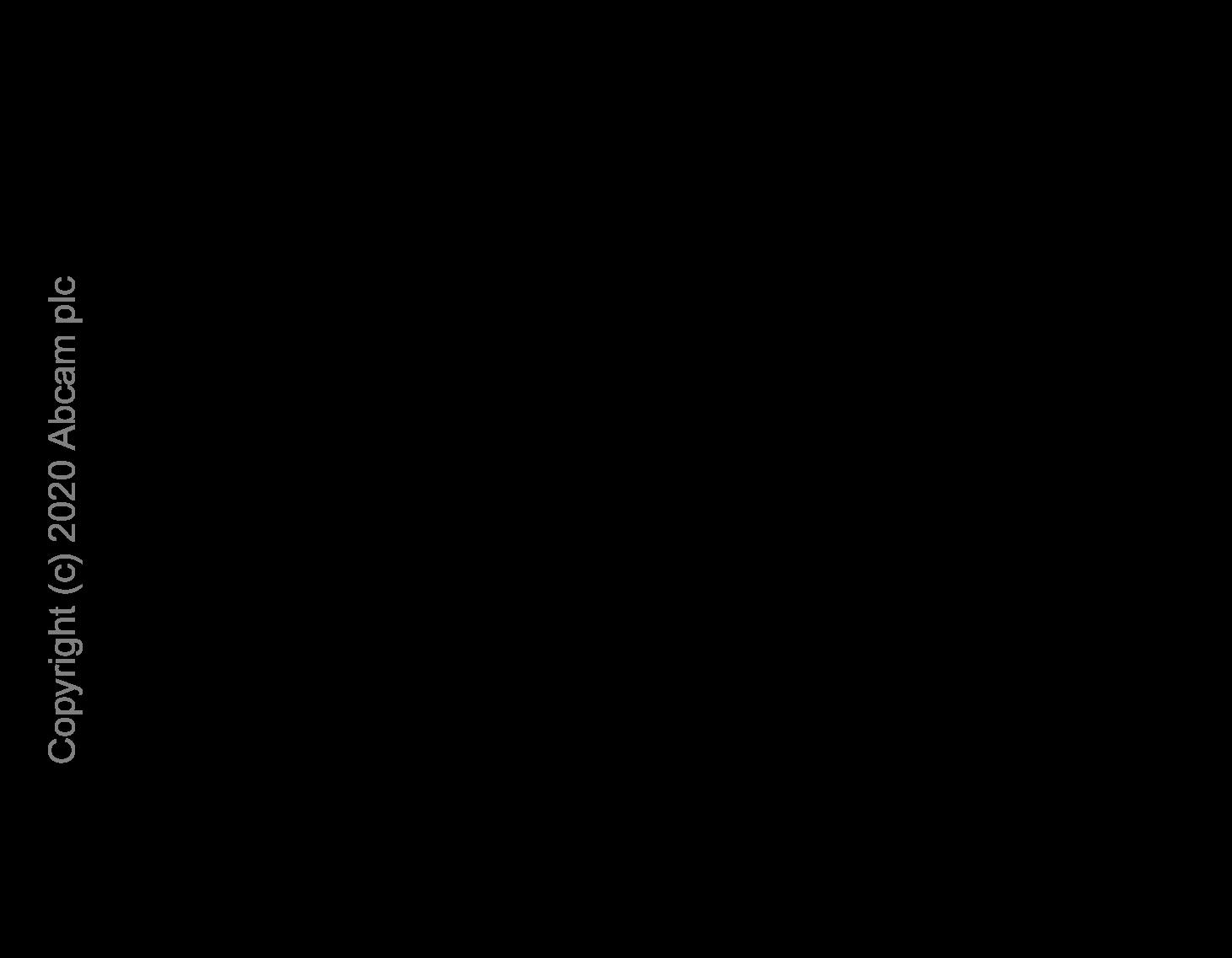 ELISA - Anti-IP10 antibody [EPR20764] (ab214668)