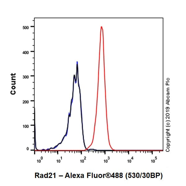 Flow Cytometry - Anti-Rad21 antibody [EPR22506-15] (ab217678)