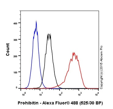 Flow Cytometry - Anti-Prohibitin antibody [EP2803Y] - BSA and Azide free (ab239865)