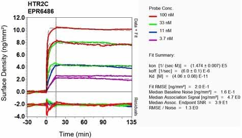 Other - Anti-5HT2C Receptor antibody [EPR6486] - BSA and Azide free (ab248070)
