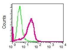 Flow Cytometry - Anti-KAT7 / Hbo1 / MYST2 antibody [EPR7194(B)] - BSA and Azide free (ab248087)