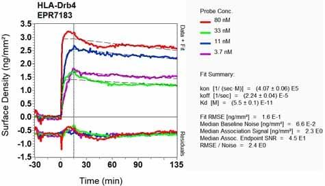 Other - Anti-HLA-DRB4 antibody [EPR7183] - BSA and Azide free (ab248175)
