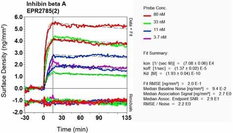 Other - Anti-Inhibin beta A antibody [EPR2785(2)] - BSA and Azide free (ab248247)