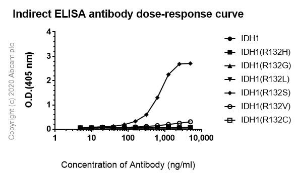 ELISA - Anti-IDH1 (mutated R132S) antibody [SMab-1] - BSA and Azide free (ab264057)