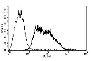Flow Cytometry - Anti-CD62E antibody [B-P7] - BSA and Azide free (ab269716)