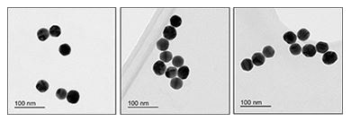 Electron Microscopy - 40nm Gold Nanoparticles (20 OD) (ab269932)