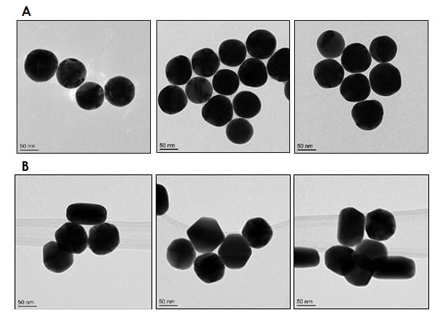 Electron Microscopy - 80nm Gold Nanoparticles (15 OD) (ab269941)