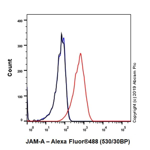 Flow Cytometry - Anti-Junctional Adhesion Molecule 1/JAM-A antibody [EPR23244-12] (ab269948)